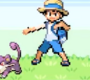 Bug Catcher's Rattata