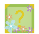 Hawaii Map Mystery Box
