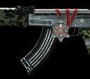 AK47, Medal of Valor