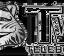 CiTV Canal Institucional