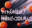 Episodio 28 (Dragon Ball Z)