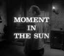 Moment in the Sun
