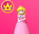 New Super Mario 3D World