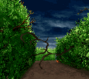 Animated vines