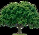 Composite Tree