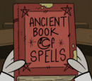 Ancient Book of Spells