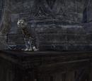Азура (кішка)