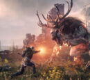 The Witcher 3 images - PR