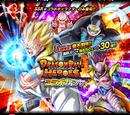 JP Rare Summon: Dragon Ball Heroes Collaboration Summon