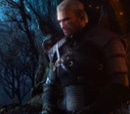 Witcher 3 Guides