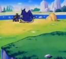 Animal Village (Dragon Ball Series)