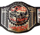 ACW Turbo Tag Team Championship