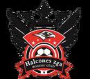 Halcones Zuñiga Soccer Club