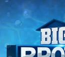 Big Brother 19 (US)