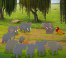 Ma Tembo's Herd