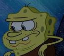 Spongy Spongy